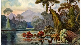 800px-Haeckel_Ceylon_Jungle_River