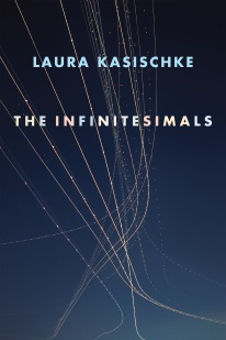 The Infinitesimals Laura Kasischke $16.00 paperback